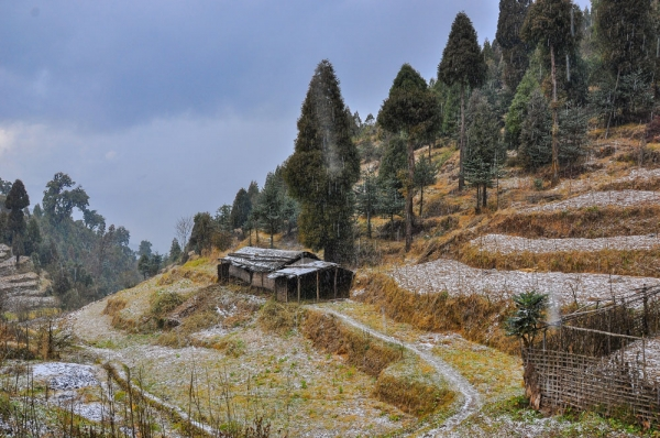 Darjeeling Dhotrey in winter
